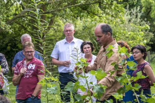 rondleidingen voedselbos bij Voedselbron Graauw Zeeland